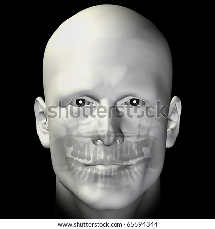 Adult man dental scan x-ray. 3d illustration. - stock photo