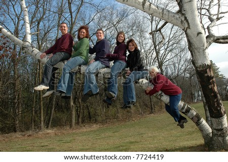 adults in  a birch tree with grandma hanging - stock photo