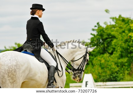 Advanced Dressage test - stock photo