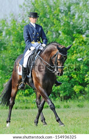 Advanced Dressage test: half-pass - stock photo