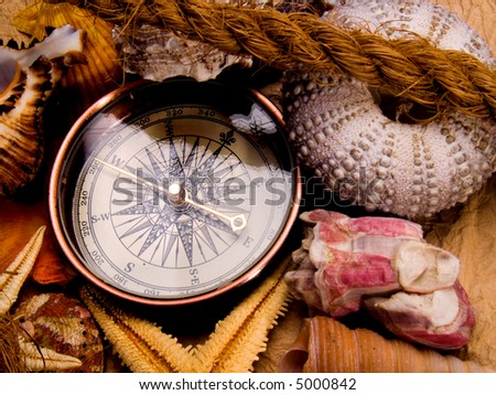 Adventure decoration with compass and shells - stock photo