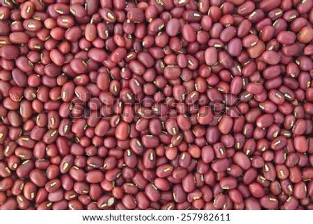 Adzuki red beans background - stock photo
