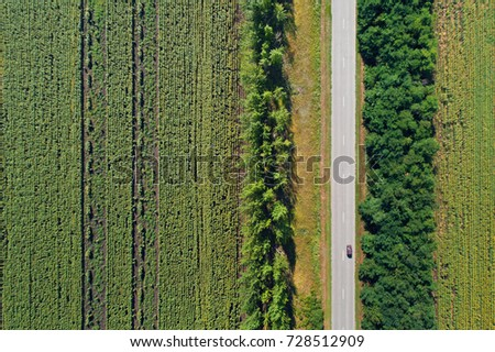 Aerial drone view of stripped sunflower fields divided with woods and a highway