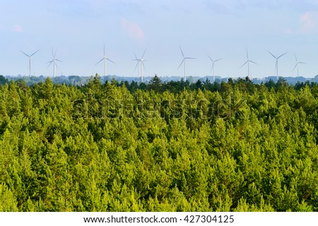 Aerial landscape with pine tree forest and wind farm on the horizon. Pomerania, northern Poland. - stock photo