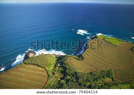 Aerial of Pineapple fields, Maui, Hawaii (northern coast) - stock photo