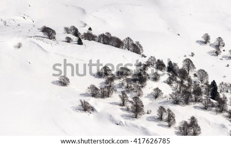 aerial shot, from a small plane, of a mountain slope with bare trees in a recent snow, shot in Orobie mountains, Bergamo , Italy - stock photo