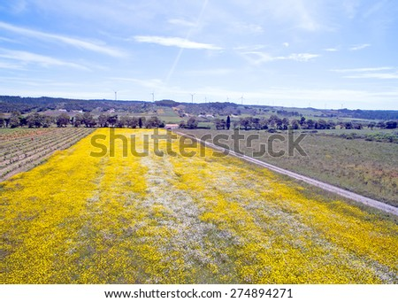 Aerial spring landscape in Portugal - stock photo