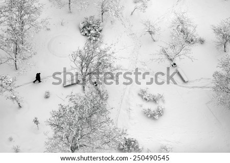 Aerial top view on a winter park with trees and footpath covered with snow. Lonely man walking through - stock photo