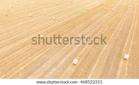 Aerial view bale hay on a corn farm after harvest in Austin, Texas, US. Golden rural landscape. Hay used as animal fodder for grazing animals as cattle, horses, goats,  sheep. Panorama agriculture.