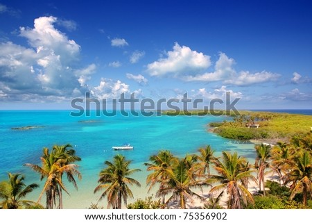 aerial view Contoy tropical caribbean island Mexico palm trees and sea - stock photo