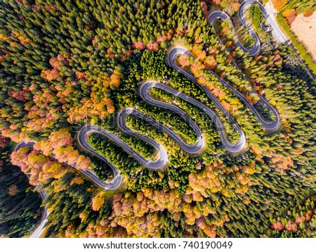 Aerial View of a Winding Road trough the Forest