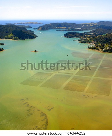 Aerial View of Aquaculture in Whangaroa Harbour, New Zealand