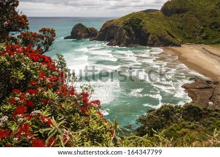 aerial view of beach on New Zealand coast - stock photo