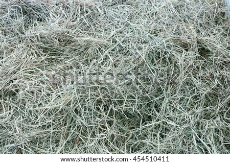 Aerial view of bunch of straw to feed horse, still green. - stock photo