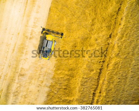 Aerial view of combine harvester on wheat field. Industrial background on agricultural theme. Use drones to inspect of your business.