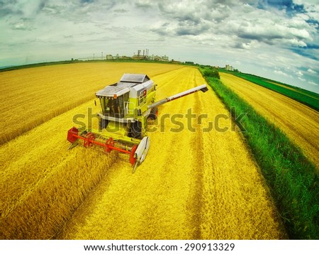 Aerial view of combine on harvest field in Serbia. Wide angle. GoPro shot. - stock photo