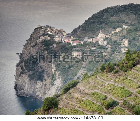 aerial view of Corniglia village, Cinque Terre, Italy - stock photo