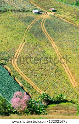 Aerial view of farm fields - stock photo