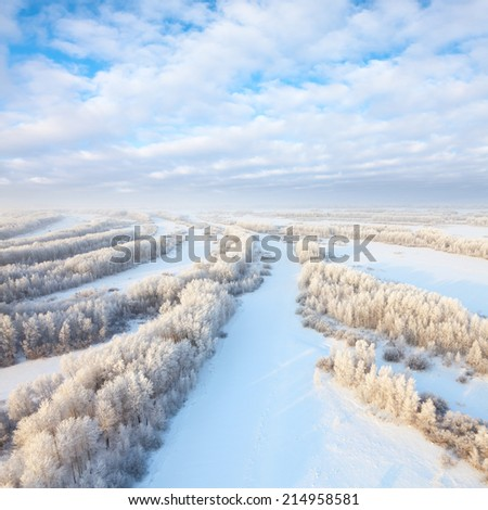 Aerial view of forest during frozen winter day. Magnificent hoarfrost on trees.  A winter forest on rising in a hard frost. - stock photo