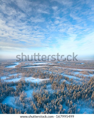 Aerial view of forest plain during a winter evening.