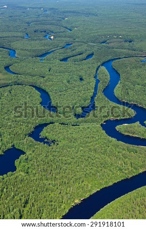 Aerial view of forest river during summer. - stock photo