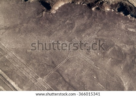 Aerial view of geoglyphs near Nazca - famous Nazca Lines, Peru. In the center, Hummingbird figure is present - stock photo