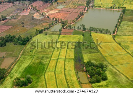 Aerial view of Green rice field in Thailand - stock photo
