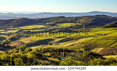 Aerial view of green vineyards in Tuscany, Italy - stock photo