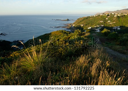 Aerial view of Island Bay in Wellington CBD. North Island, New Zealand. - stock photo
