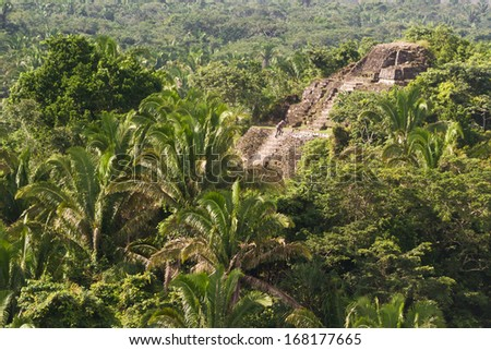 aerial view of Lamanai maya ruins in the tropical jungle of Belize - stock photo
