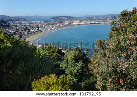 Aerial view of Lyall Bay in Wellington CBD. North Island, New Zealand. - stock photo