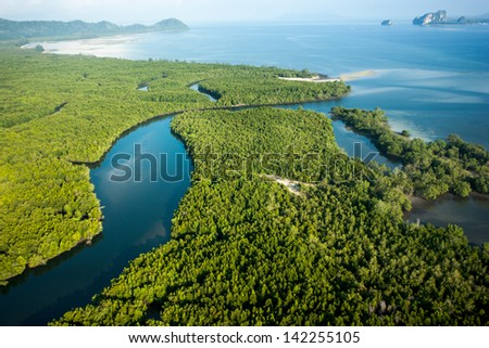 Aerial view of mangrove forest and open sea - stock photo