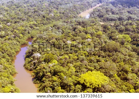Aerial view of Rio Cononaco in the Ecuadorian Amazon with a huge emergent Ceibo tree in the foreground - stock photo