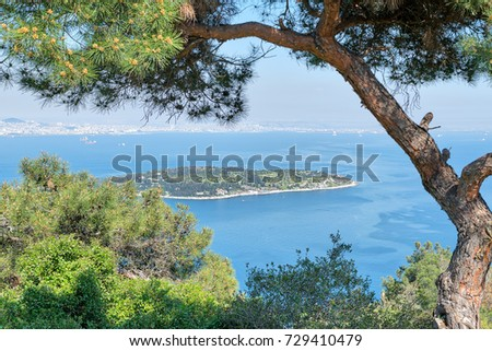 Aerial view of Sedef Island (Mother of Pearl Island) framed by green trees from Buyukada island. Both are neighborhoods in the Adalar district of Istanbul, Turkey