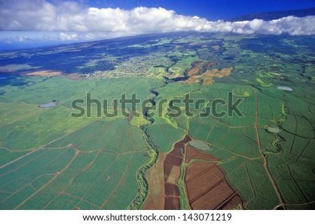 Aerial view of sugar fields, Maui, Hawaii - stock photo