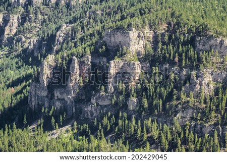 aerial view of the black hills of South Dakota in springtime - stock photo