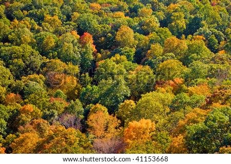 Aerial view of the fall foliage in New England. - stock photo