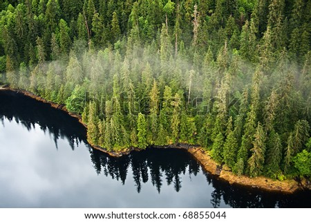 Aerial view of the mist hanging in the Tongass temperate rain forest, Misty Fjords National Monument, Alaska