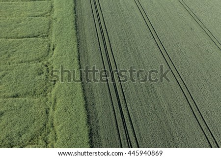 aerial view of the springtime harvest field in Poland