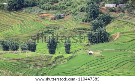 Aerial view of traditional houses at terraced rice fields in Sapa, Vietnam