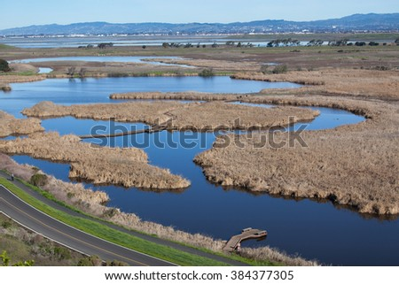 Aerial view of wet marshland - stock photo