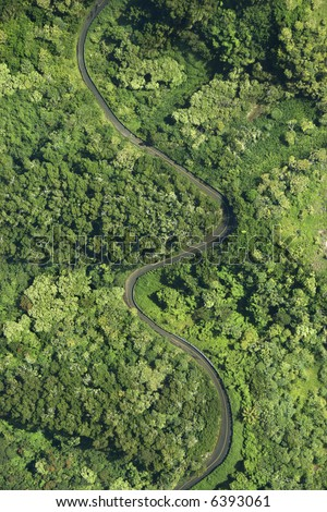 Aerial view of winding road through lush green forest in Maui, Hawaii. - stock photo