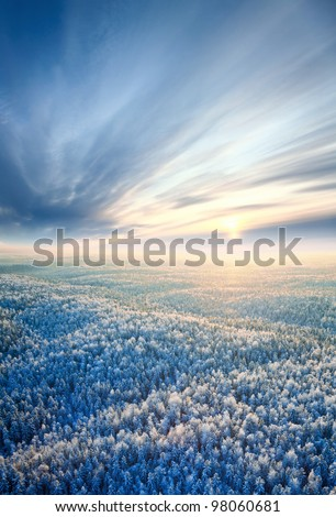 Aerial view of winter forest during sunset. - stock photo