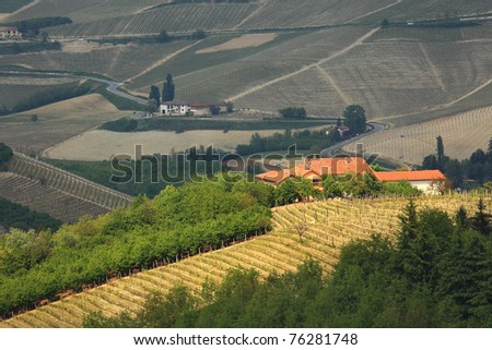 Aerial view on lone rural house on the hills among trees and vineyards in Piedmont, northern Italy.