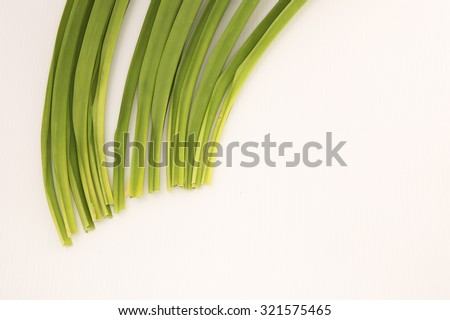 Aerial view on part of the long green pandan leaves at top left side with white background. Its strong sweet fragrance is often used for culinary, herbal medicinal benefits and insect repellents.  - stock photo