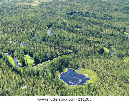 Aerial view on siberian taiga  landscape from a helicopter