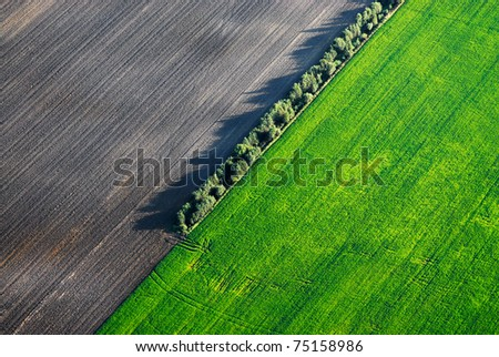 Aerial view over the green field