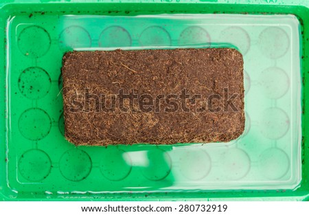 Aerial view wet peat full block in green tablet with water  Green plastic tray with coconut substrate coir briquet absorbing water, for urban gardening and agriculture concept - stock photo