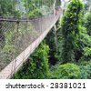 Aerial walkway disappearing into the distance across the rain forest in Ghana - stock photo