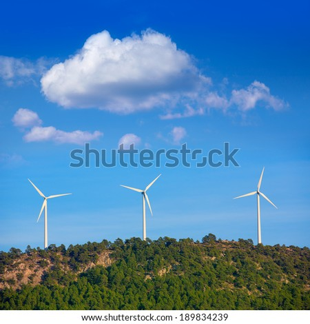 Aerogenerator windmills in the mountain top in a pine tree forest - stock photo